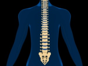 spine- scoliosis
